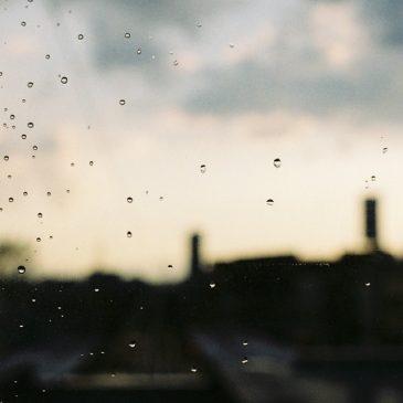 待っている。雨上がりを。