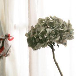 紫陽花のドライフラワー。