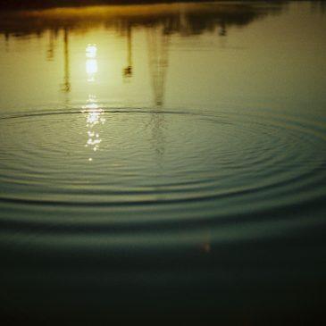 美しい波紋。を投げかけてまいります。