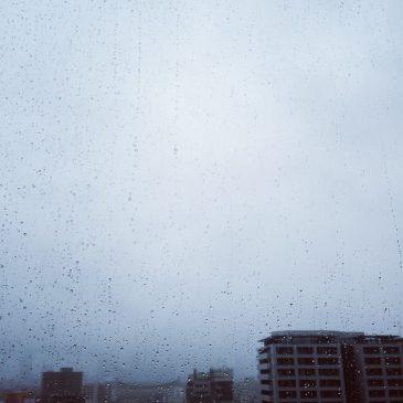 大人になって降る雨は、