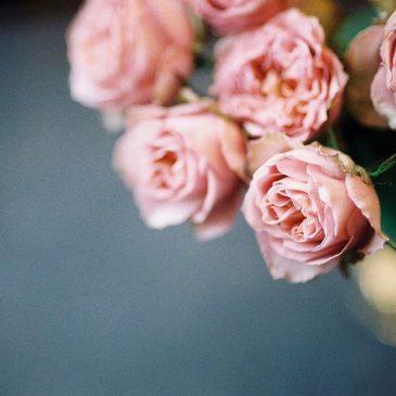 日々、花びらづくり。